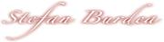 logo Stefan Burdea